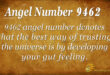9462 angel number