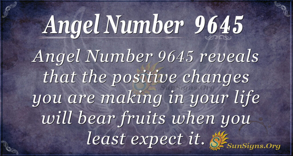 Angel Number 9645