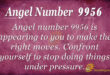 9956 angel number