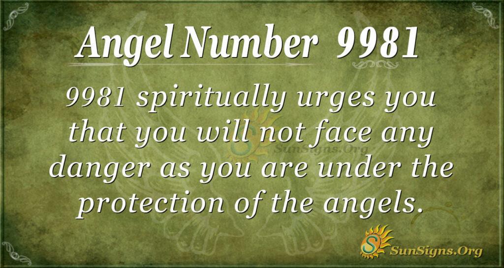 9981 angel number
