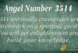 3514 angel number
