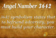 3642 angel number