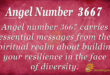 3667 angel number