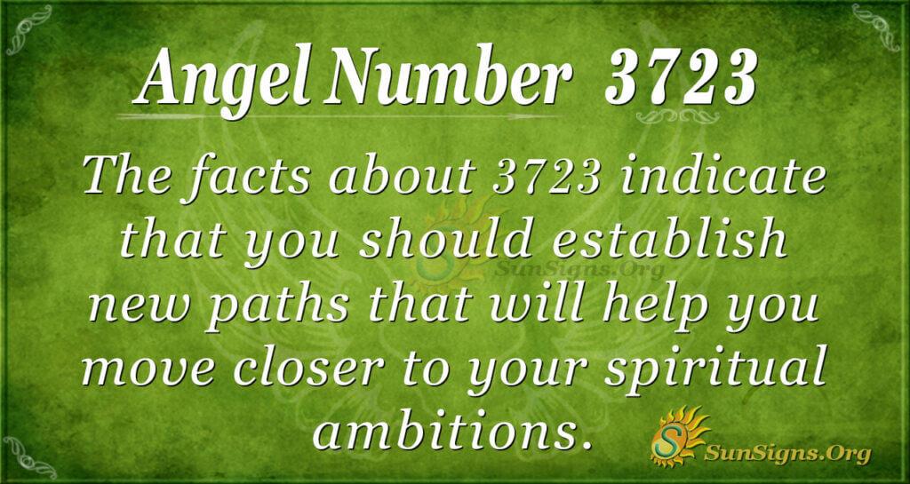 3723 angel number