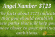 3723 angel number