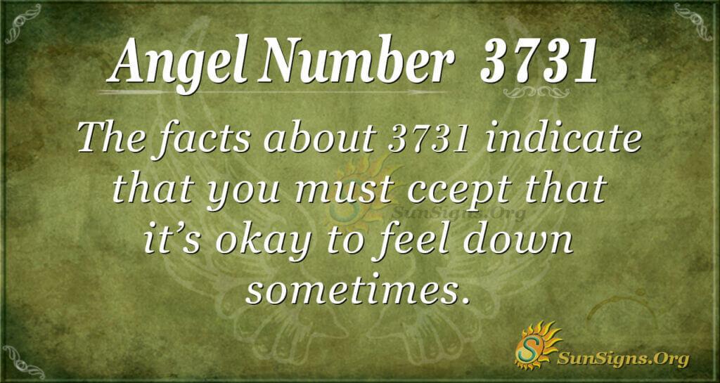 3731 angel number