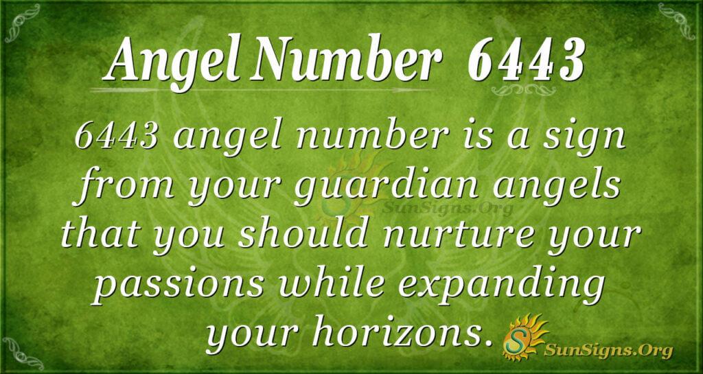 6443 angel number