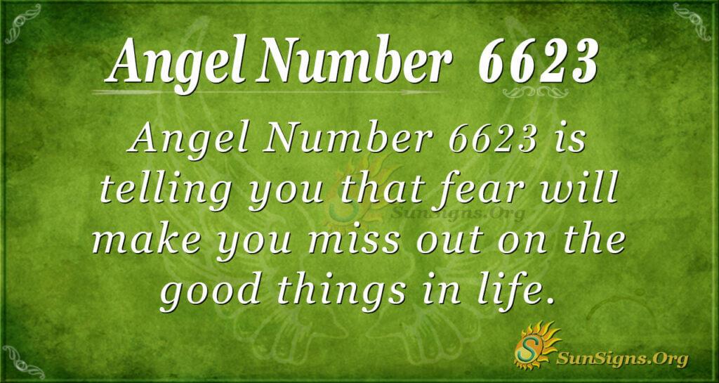 6623 angel number