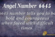 6645 angel number