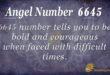 6645 angel number