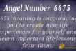 6675 angel number