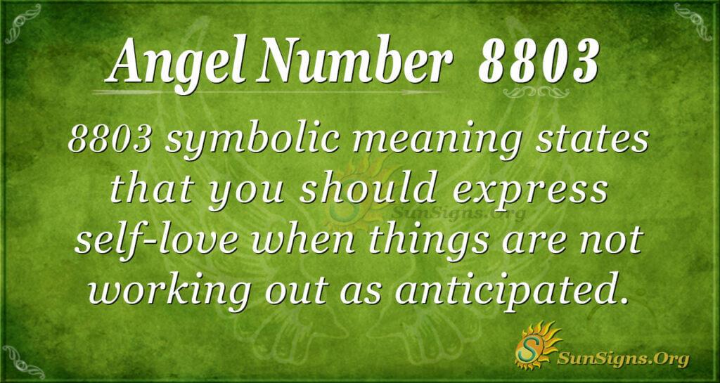 8803 angel number