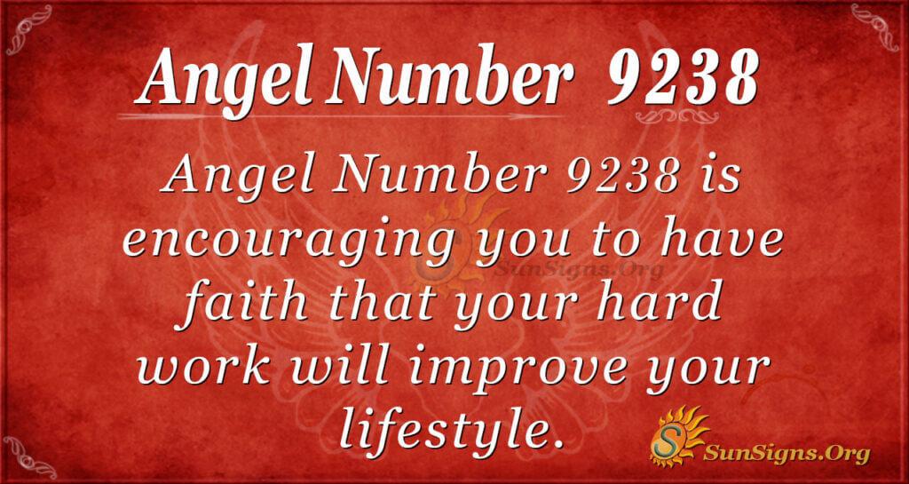 9238 angel number