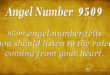 9509 angel number