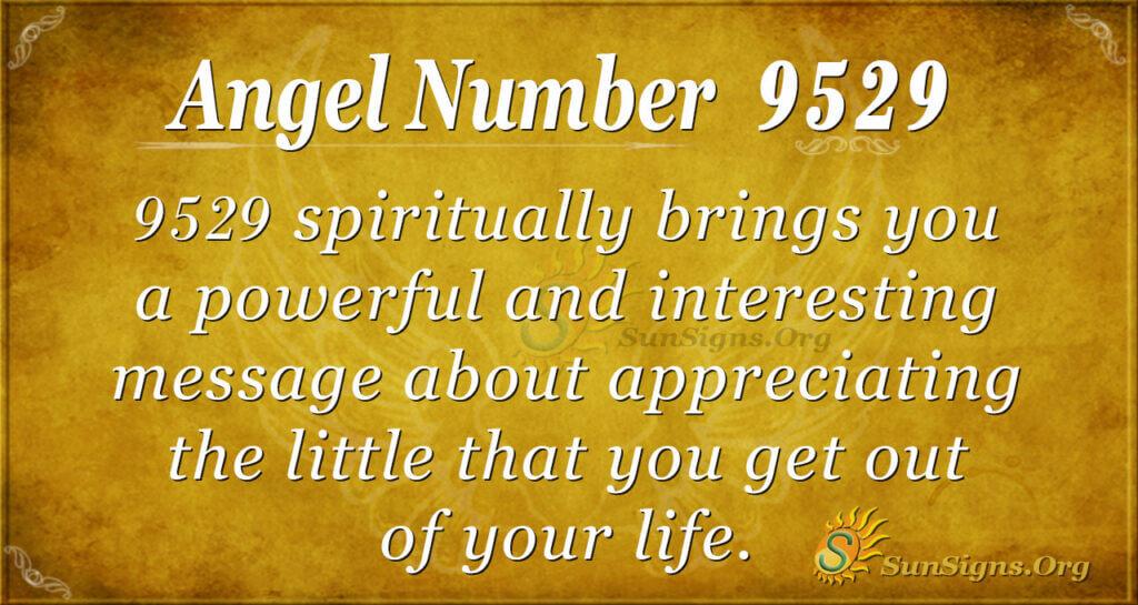 9529 angel number