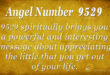 9529 angel number