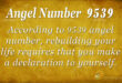 9539 angel number