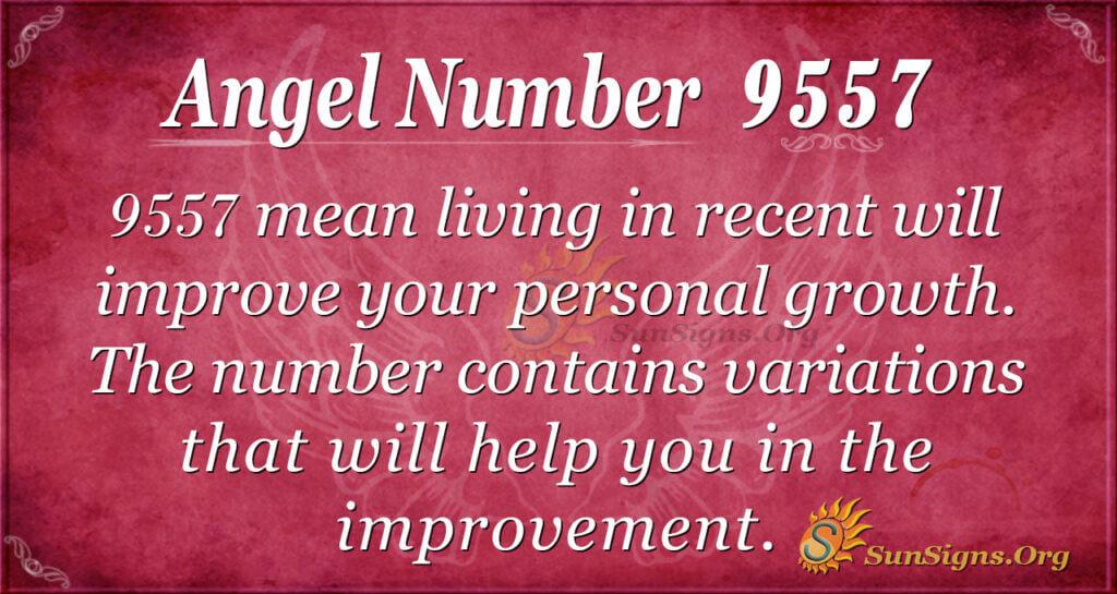 9557 angel number