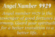 Angel number 9929