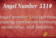 5310 angel number