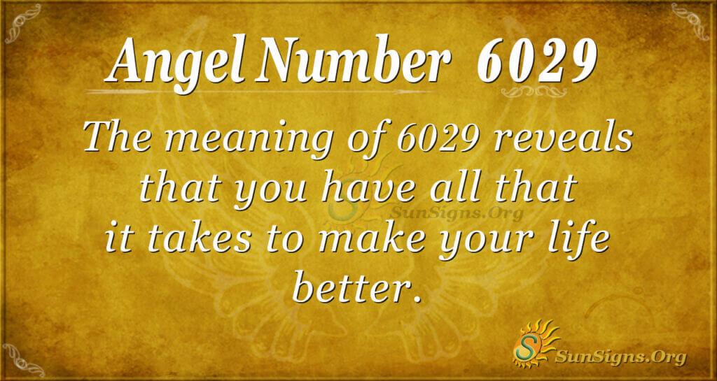 6029 angel number