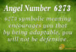 6273 angel number