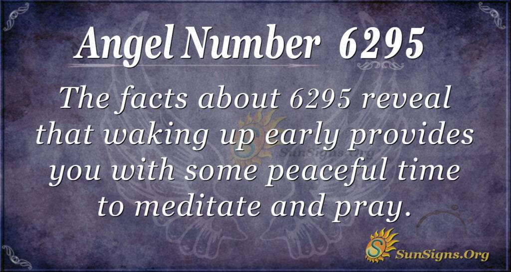 6295 angel number
