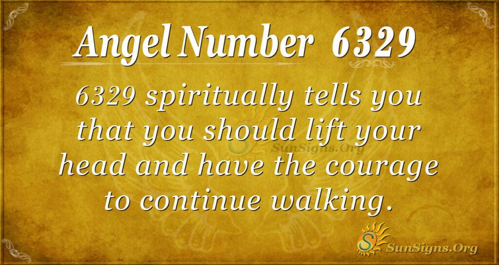 6329 angel number
