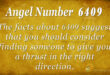 6409 angel number