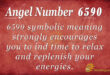 6590 angel number