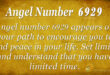 6929 angel number
