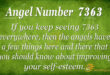7363 angel number