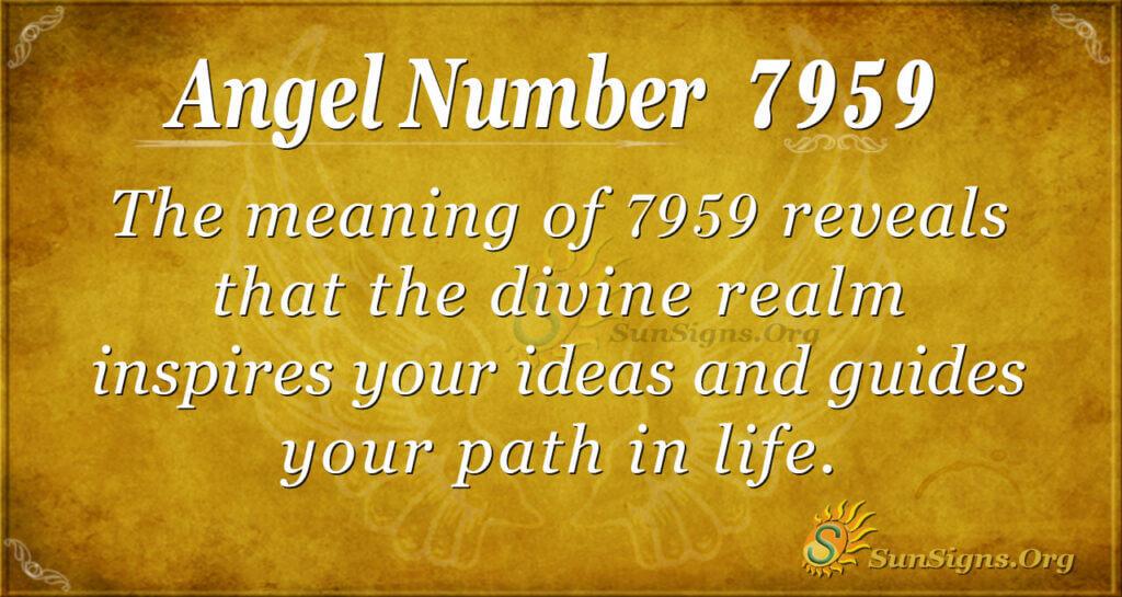 7959 angel number