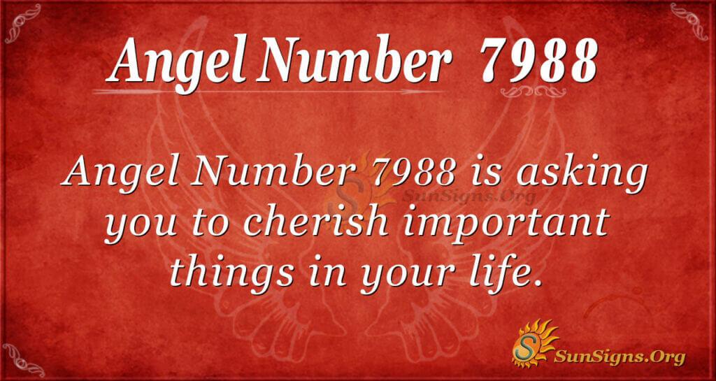 7988 angel number