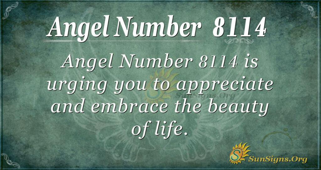 8114 angel number