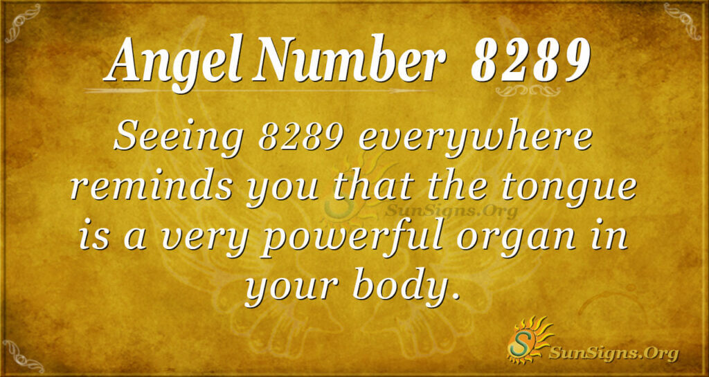 8289 angel number