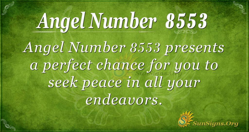 8553 angel number