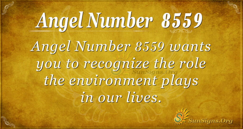 8559 angel number