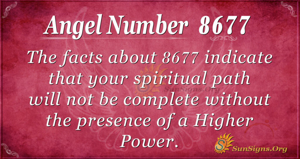 8677 angel number