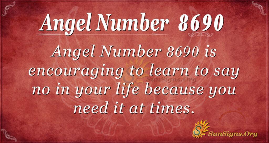 8690 angel number