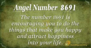 8691 angel number