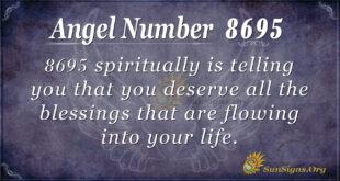 8695 angel number