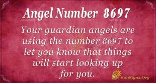 8697 angel number