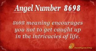 8698 angel number