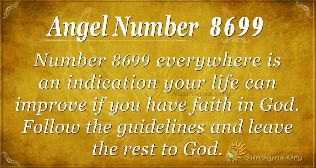 8699 angel number