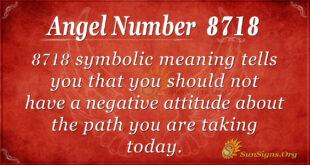 8718 angel number