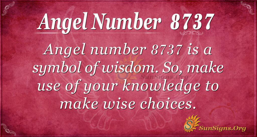 8737 angel number