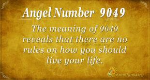 9049 angel number