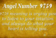 9759 angel number