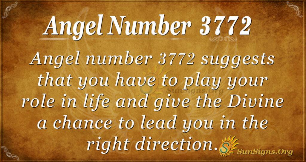 3772 angel number